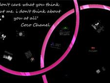 《Chanel简介》幻灯片