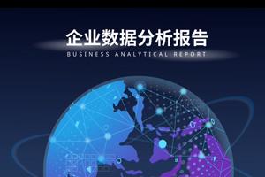 企业数据分析报告视频制作
